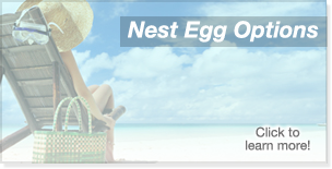 IRA - Nest Egg Options